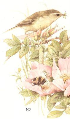 Art of Marjolein Bastin Marjolein Bastin, Nature Artists, Dutch Artists, Bird Illustration, Art Moderne, Wildlife Art, Bird Art, Beautiful Birds, Watercolor Paintings