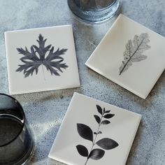 Knowle Leaf Coaster Tiles