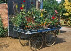 Flower cart.