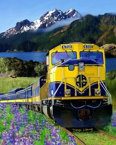 Alaska Railroads....