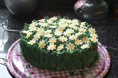 Madeliefjes taart zelfgemaakt - Taarten voor kids van Annie Rigg -