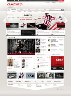 25 Professional and Modern Web Designs   From up North