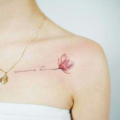 Magnolia tat.