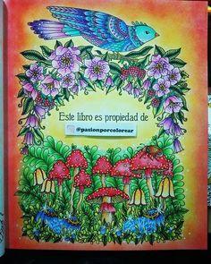 """WEBSTA @ pasionporcolorear - Libro nuevo """"Dagdrömmar"""", """"Mundo de Ensueño"""""""