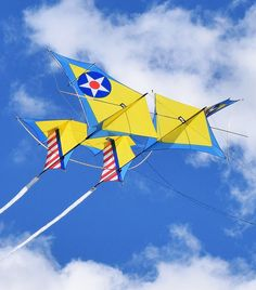 A design called the Stearman Reprise. I would say this box kite is deliberately dressed up to look like an aircraft. As hinted at by the Stearman name. T.P. (my-best-kite.com)