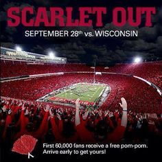 Scarlet Out The Shoe >>> NO GRAY!