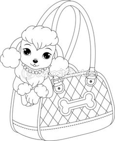 free colouring pages  Kids Learning  Pinterest  Poodle Free