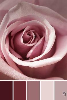 ZJ Colour Palette 290 #colourpalette #colourinspiration
