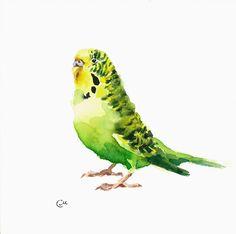 Budgerigar Parakeet - Original Watercolor Green Bird Painting 7 4/5 x 7 4/5 inches Pets Budgie