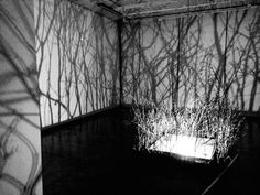 Forest Room---detailed art installation experiment.