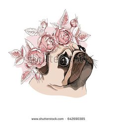 Portrait of a Pug dog in a Rose flower head wreath. Vector illustration.