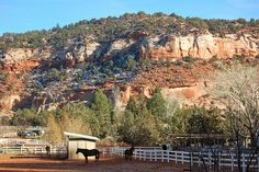 "I'm pretty sure this is where I'm going to retire!  Best Friends Animal Sanctuary in Kanab, Utah.  They provide sanctuary for just about any kind of animal in need (including the ""Vicktory"" dogs from the Michael Vick case)."