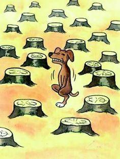 La déforestation nuit gravement aux animaux... / Deforestation has heavy detrimental effects on the animals...