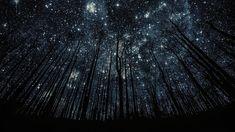 Stunning Starry Skies