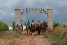 Horse-riding by our vineyard Altos de Corral. Minimum: 2 people Maximum: 10 people Duration aprox.: 2h30 €24,00 $32.00