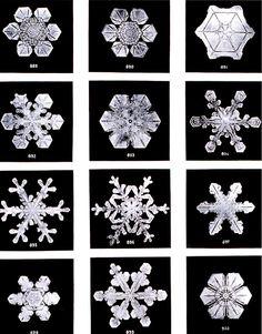 Snowflake photography by Wilson Bentley