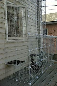 If I ever get another cat I'm doing this!    Build A Do-It-Yourself Outdoor Cat Enclosure Or Run... just like i said in other pin, we could use these to make one :)