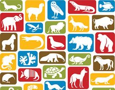 Client: Smithsonian's National ZooArt Director: Michelle StaudenmeierThis icon system depicting specific species from their collection was created with function and form in mind. It's interchangeable for multiple uses in print, web and gift shop items. Working On Myself, New Work, Behance, Snoopy, Kids Rugs, Illustrations, Gallery, Check, Animals
