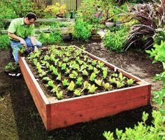 jardinage vert