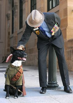 anzac day. Australia & New Zealand Army Corps... A serious rememberance day since WW 1 , Gallipoli and April 25
