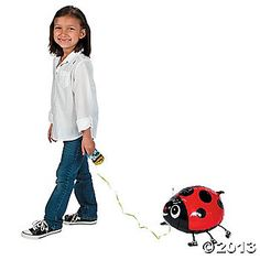Pet lady bug