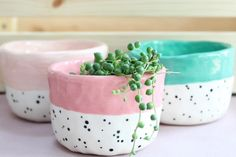 My three dotty pots🌿 They are all hand built (without a wheel) which means each pot is completely unique, never 'perfect' but full…. My three dotty pots🌿 They are all hand built (without a wheel) which means ea. Pottery Painting Designs, Pottery Designs, Pottery Pots, Ceramic Pottery, Crackpot Café, Painted Plant Pots, Hand Built Pottery, Hand Painted Pottery, Ceramic Pots