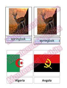 African 3 part cards - The Hands-On Homeschooler