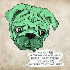 This one is hilarious, almost put it onto my humor board, but it has a pug, and that wins.