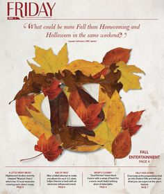 Newspaper: UNC Homecoming 2010