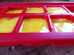 eggs frozen in an ice cube tray