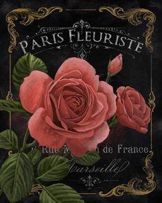 Paris Fleuriste by Abby White ~ floral art