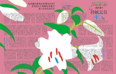 Kaori Kumura : Untitled