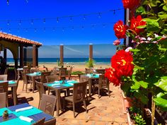 Ready for day time patio drinks with friends!? #TheShoresRestaurant #LaJolla