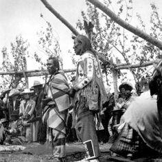Three Bears, Many Guns - Blackfeet (Pikuni) - circa 1902