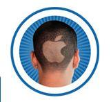 Apple fan/cult