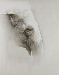 Marzio Tamer Elephant Watercolour 54 x 43.25ins (137 x 110cm)