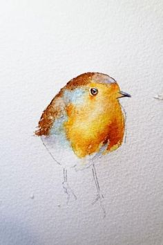 How to paint a robin in 8 easy steps. – Page 2 – watercolours by rachel Bird Painting Acrylic, Watercolor Paintings For Beginners, Watercolor Bird, Watercolor Illustration, Painting & Drawing, Painting Flowers, Watercolor Pencils, Watercolor Portraits, Watercolor Techniques
