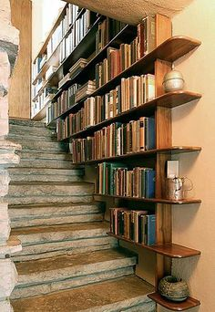 Bookshelves lining the stairs . . . Already have them upstairs. Maybe stairs to the basement . . .  ?