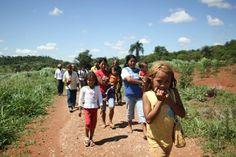 O Cimi (Conselho Indigenista Missionário) informou que foi suspensa a ordem de reintegração de posse prevista para hoje (21) na região de Antonio João (MS), onde indígenas Guarani-Kaiowá estavam na iminência de serem despejados de terras pertencentes a este povo, mas reclamadas por fazendeiros.