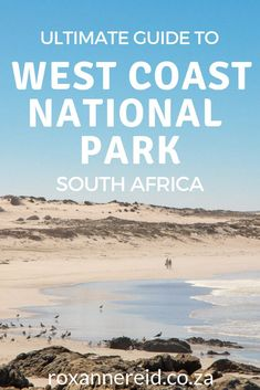 Wetland, beach, wildlife, spring flowers, hiking and biking. Find out more about the West Coast National Park in this ultimate guide. Lower Deck, Travel Guides, Travel Tips, White Sand Beach, Africa Travel, Amazing Destinations, West Coast, Family Travel, South Africa