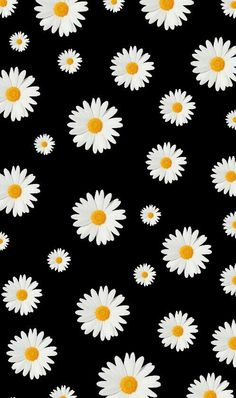 Flowers background iphone wallpapers gift wrapper 39 new Ideas Iphone Wallpaper Pink, Aesthetic Iphone Wallpaper, Screen Wallpaper, Aesthetic Wallpapers, Pink Daisy Wallpaper, Flower Background Wallpaper, Flower Backgrounds, Wallpaper Backgrounds, Black Flowers Wallpaper