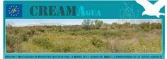 Un proyecto LIFE aumenta la biodiversidad en el río Flumen en Huesca La biodiversidad ha aumentado en el río Flumen y en su entorno en la cu...