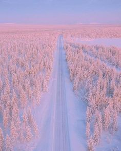 Lapland, Finland 👍 katalay.net/amazing-places/ #Lapland #Finland Snow Covered Trees, Beautiful Places In The World, Amazing Places, Shades Of White, Nature Images, Winter Snow, Natural Wonders, Videos, Finland
