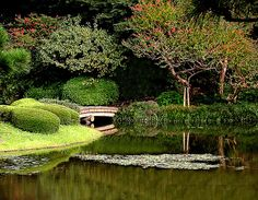 The garden at the Imperial Palace in Tokyo.
