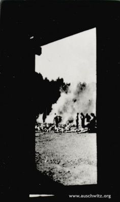 A rare picture of the actual process of burning bodies at Auschwitz/Birkenau.  Taken clandestinely, and at great risk, by a member of the Sonderkommando (special detail, or special command), it shows other Sonderkommando burning the bodies of gassed inmates.  Often, they burned the bodies of friends and family.  Given preferential treatment during their work, they usually lasted less than a month, being gassed to prevent their giving witness to the atrocities committed at the camp.