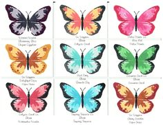 Watercolor Wings Ideas by Lorita Koehn Just trying out different color combos with this gorgeous new stamp set!!