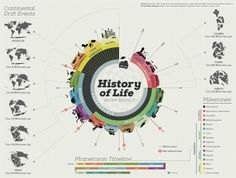 History of Life as we Know it Infographic