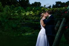 Vineyards at Chappel Lodge by austin wedding photographers