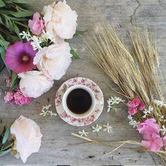Good morning ☕️#coffeeandseasons #teaandseasons #hcmfiersdemescouleurs