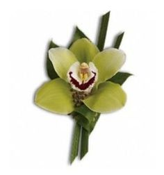 green orchid wedding flower boutonniere, groom boutonniere, groom flowers, add pic source on comment and we will update it. www.myfloweraffair.com can create this beautiful wedding flower look.